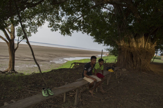 På stammen går det att avläsa var vattnet stod under regnperioden för några månader sedan...